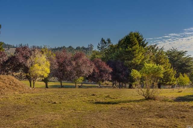 820 Salmon Creek Road, Bodega Bay, CA 94923 (#321095355) :: Lisa Perotti | Corcoran Global Living
