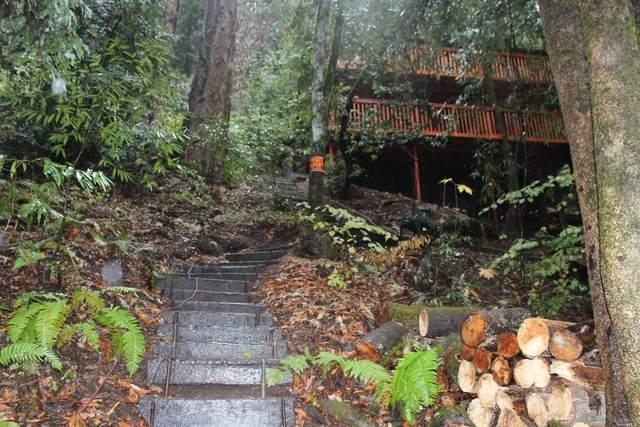 14150 Fern Road, Guerneville, CA 95446 (#321101267) :: Lisa Perotti | Corcoran Global Living