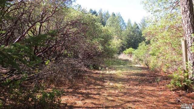 1201 Madrone Drive, Laytonville, CA 95454 (#321101858) :: Corcoran Global Living