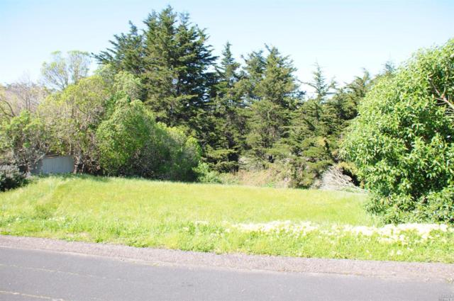 21643 Heron Drive, Bodega Bay, CA 94923 (#21605149) :: Intero Real Estate Services