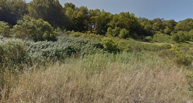 6052 Lichau Road, Penngrove, CA 94951 (#21625572) :: RE/MAX PROs