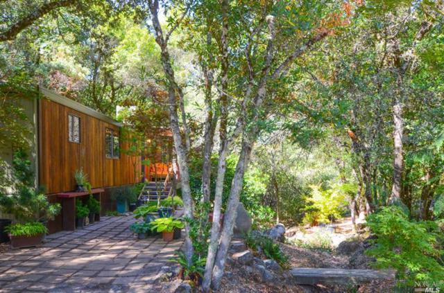 3885 Cavedale Road, Glen Ellen, CA 95442 (#21713200) :: RE/MAX PROs