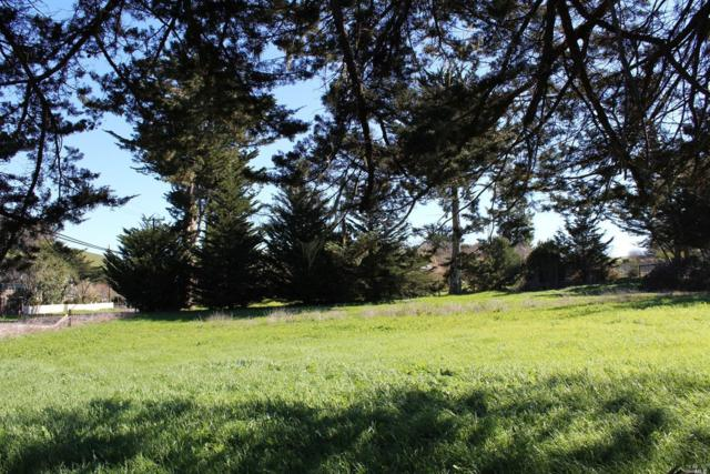 0 Dillon Beach (Aka First St) Road, Tomales, CA 94971 (#21800319) :: RE/MAX GOLD