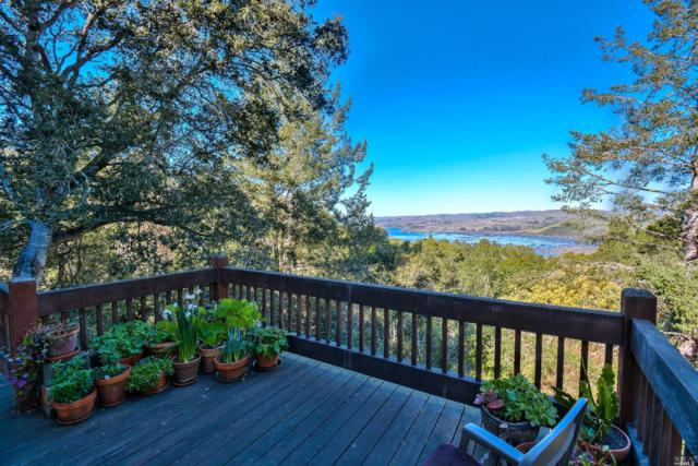 9-Lower Robert Drive E, Inverness, CA 94937 (#21802597) :: RE/MAX GOLD