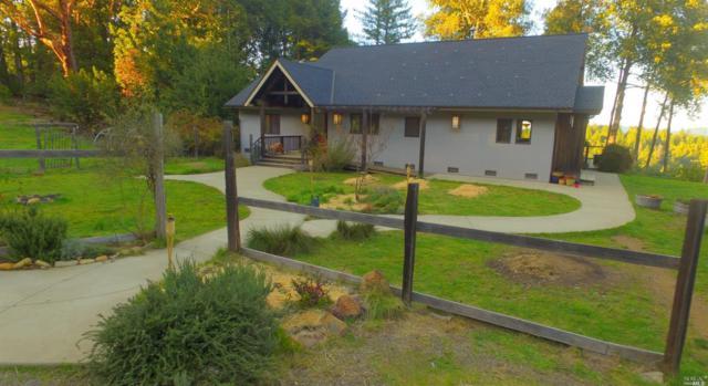 34450 Eureka Hill Road, Point Arena, CA 95468 (#21806913) :: Ben Kinney Real Estate Team