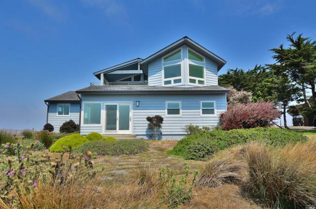 528 Oceana Drive, Dillon Beach, CA 94929 (#21810086) :: Perisson Real Estate, Inc.