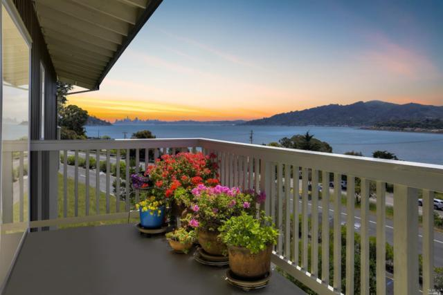 35 Andrew Drive #141, Tiburon, CA 94920 (#21812843) :: Lisa Imhoff | Coldwell Banker Kappel Gateway Realty