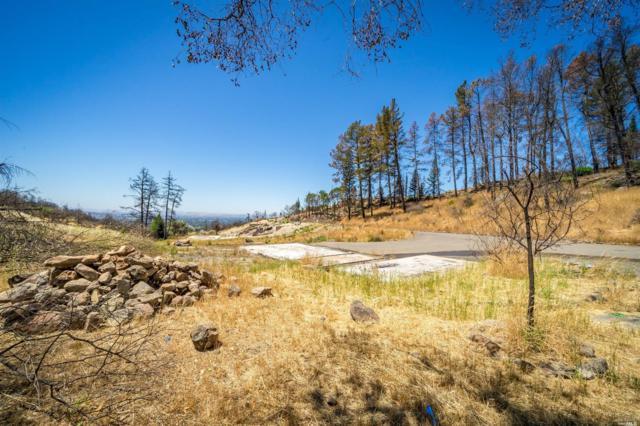 3842 Horizon View Way, Santa Rosa, CA 95404 (#21816772) :: W Real Estate | Luxury Team