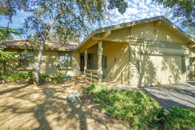 12927 Lake Wildwood Drive, Other, CA 95946 (#21817324) :: Rapisarda Real Estate
