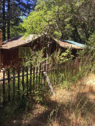 17560 Indian Creek Road, Philo, CA 95466 (#21818635) :: Perisson Real Estate, Inc.