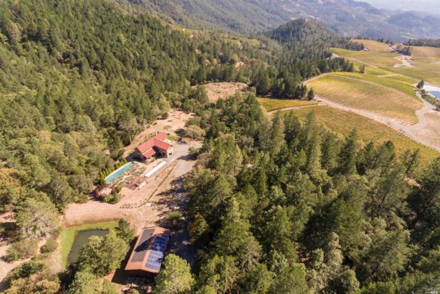 15300 Ida Clayton Road, Calistoga, CA 94515 (#21823081) :: Rapisarda Real Estate