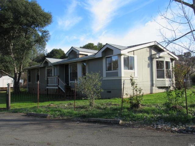 2375 Harness Drive, Pope Valley, CA 94567 (#21824552) :: RE/MAX GOLD