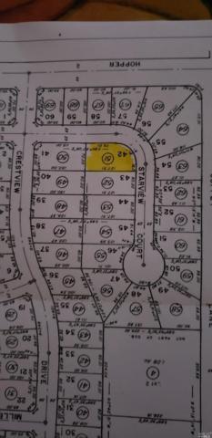 1411 Starview Court, Santa Rosa, CA 95403 (#21824759) :: W Real Estate | Luxury Team