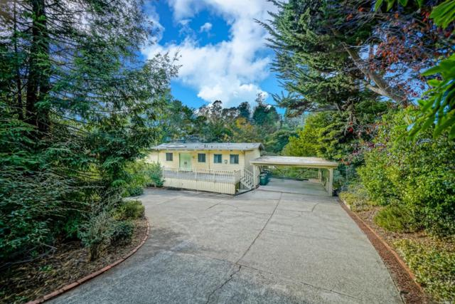 569 Fairview Avenue, Mill Valley, CA 94941 (#21828836) :: Windermere Hulsey & Associates