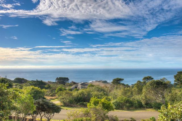 35097 Crows Nest Drive, The Sea Ranch, CA 95497 (#21829264) :: W Real Estate | Luxury Team
