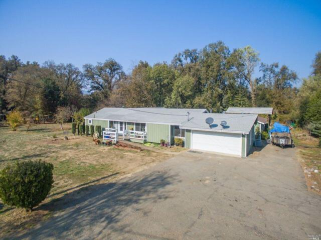 8600 E Side Potter Valley Road, Potter Valley, CA 95469 (#21829284) :: W Real Estate | Luxury Team