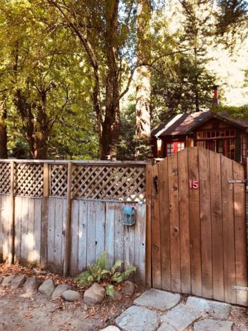 15 Eldridge Avenue, Mill Valley, CA 94941 (#21900573) :: RE/MAX GOLD