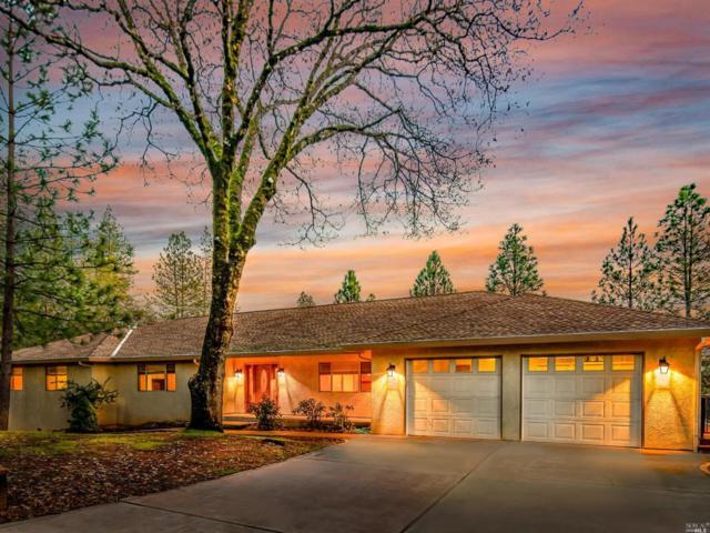 20229 Ocelot Drive, Grass Valley, CA 95949 (#21900771) :: Ben Kinney Real Estate Team