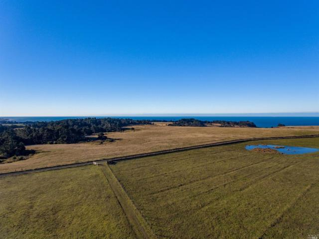 43100 Curley Lane, Point Arena, CA 95468 (#21903280) :: Michael Hulsey & Associates