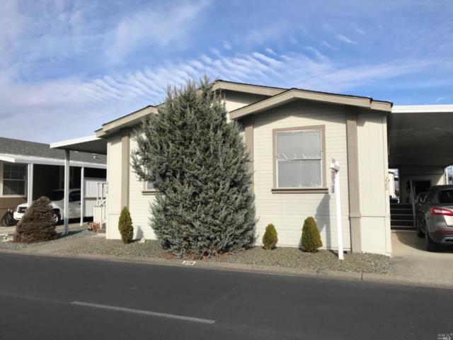 228 Daisy Drive, Napa, CA 94558 (#21903430) :: W Real Estate | Luxury Team