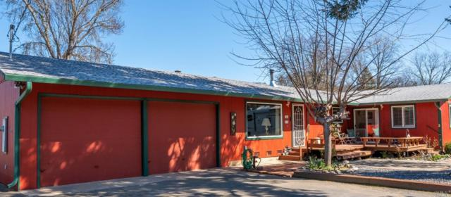 9900 Spring Valley Road, Potter Valley, CA 95469 (#21903704) :: Intero Real Estate Services