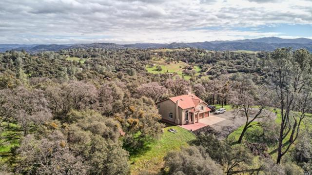 3748 Gold Pan Court, Calaveras, CA 95245 (#21904089) :: W Real Estate | Luxury Team