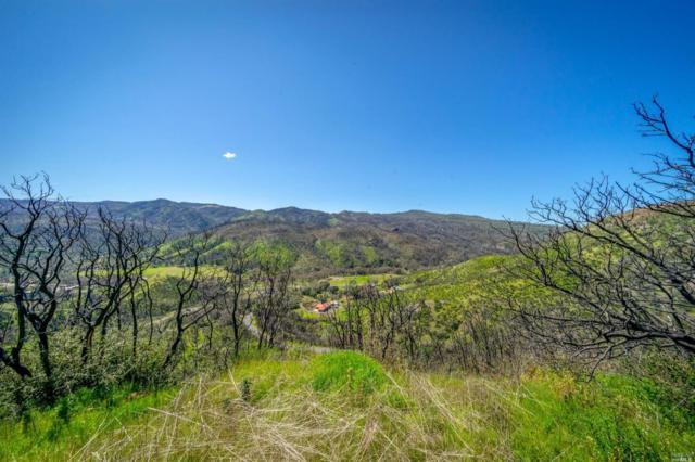 0 Capell Valley Crest Road, Napa, CA 94558 (#21906306) :: Intero Real Estate Services