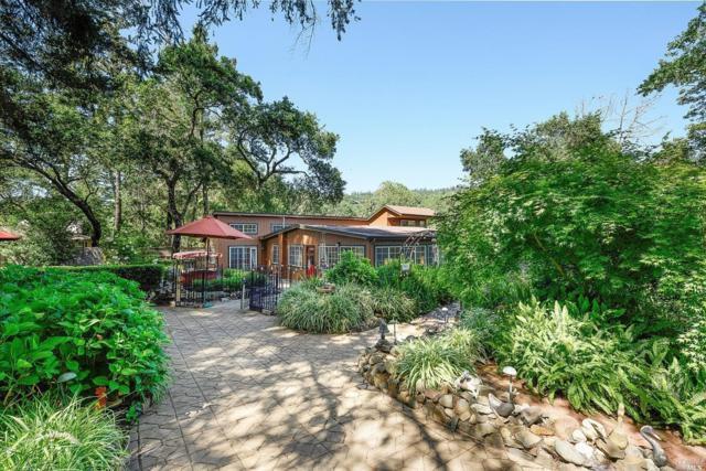 946 Champion Lane, Deer Park, CA 94576 (#21909303) :: Lisa Perotti | Zephyr Real Estate