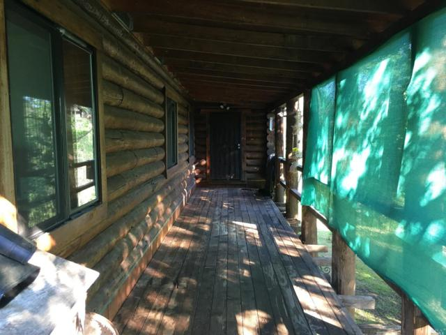 1829 Appaloosa Way, Angels Camp, CA 95222 (#21911043) :: Intero Real Estate Services