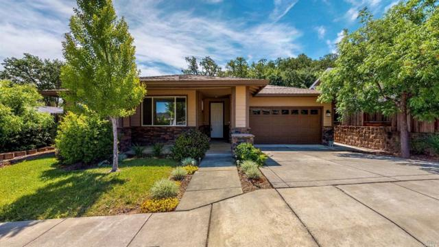 101 Polaris Court, Cloverdale, CA 95425 (#21912101) :: Rapisarda Real Estate