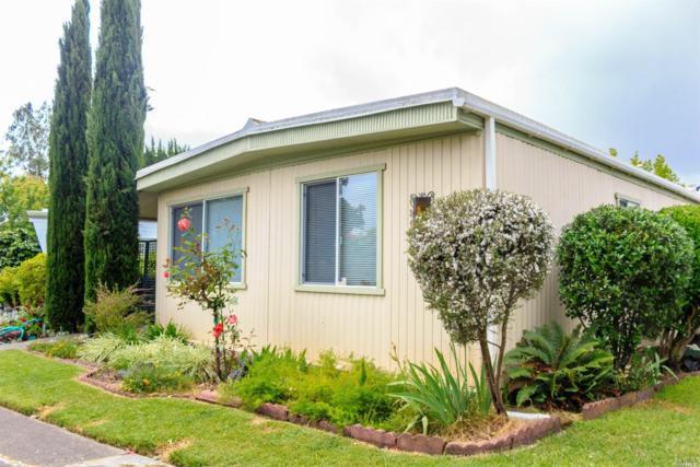 151 Chiquita Camino Street, Sonoma, CA 95476 (#21912228) :: RE/MAX GOLD