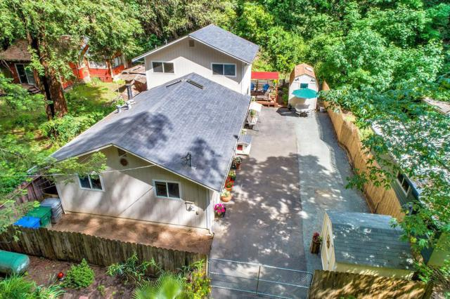16343 Rio Nido Road, Guerneville, CA 95446 (#21912373) :: RE/MAX GOLD