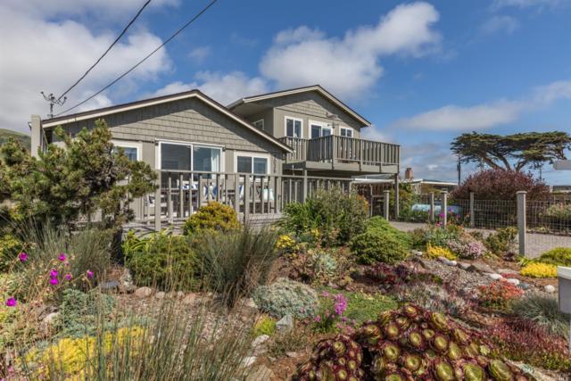 7036 Cliff Avenue, Bodega Bay, CA 94923 (#21913372) :: RE/MAX GOLD