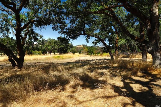 25 Sylvia Drive, Glen Ellen, CA 95442 (#21913988) :: RE/MAX GOLD