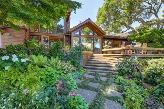 55 Spring Lane, Tiburon, CA 94920 (#21917583) :: W Real Estate   Luxury Team