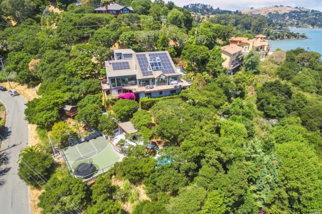 3668 Paradise Drive, Tiburon, CA 94920 (#21919625) :: W Real Estate | Luxury Team