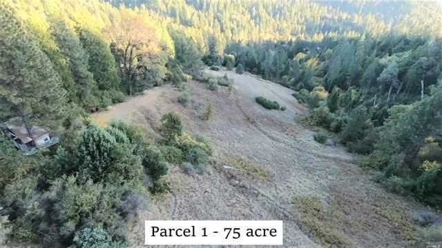 13057 Baker Road, Other, CA 95922 (#21928352) :: Rapisarda Real Estate
