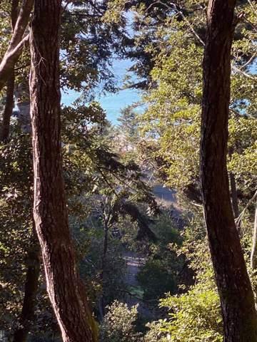 35264 Crows Nest, The Sea Ranch, CA 95497 (#21930807) :: Team O'Brien Real Estate