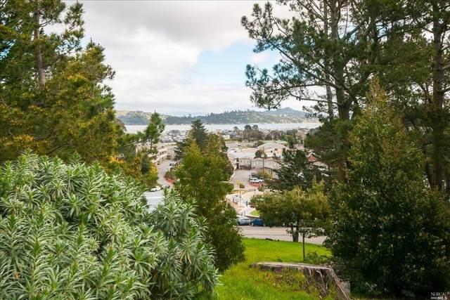 741 Drake Avenue, Sausalito, CA 94965 (#22015303) :: Intero Real Estate Services