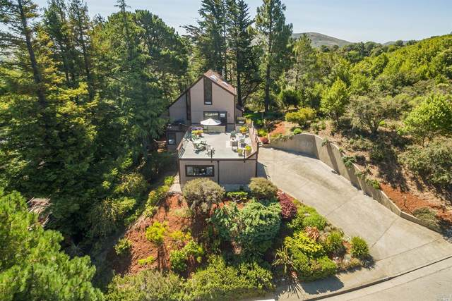 411 County View Drive, Mill Valley, CA 94941 (#22018753) :: RE/MAX GOLD