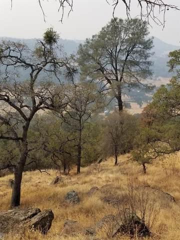 0 1827 Pinto Drive, Angels Camp, CA 95222 (#22023675) :: Corcoran Global Living