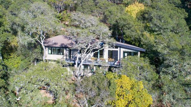 20 Stetson Avenue, Mill Valley, CA 94941 (#22025650) :: Lisa Perotti   Corcoran Global Living