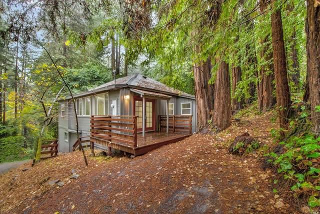 21495 Highland Terrace, Monte Rio, CA 95462 (#22027250) :: Golden Gate Sotheby's International Realty