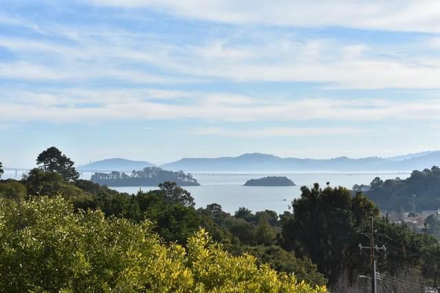 115 Fernwood Drive, San Rafael, CA 94901 (#22031064) :: Team O'Brien Real Estate