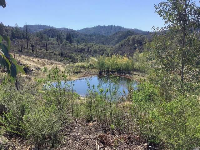 4455 Mt. Home Ranch Road, Calistoga, CA 94515 (#321013449) :: RE/MAX GOLD
