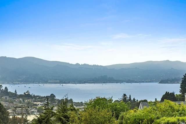 132 Marinero Circle, Tiburon, CA 94920 (#321014319) :: Rapisarda Real Estate