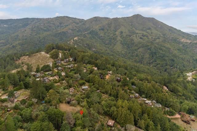 0 Redwood Avenue Avenue, Mill Valley, CA 94941 (#321023829) :: Lisa Perotti   Corcoran Global Living