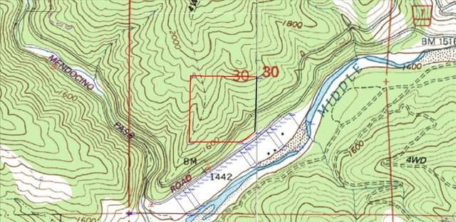 32540 Mendocino Pass Road, Covelo, CA 95428 (#321025482) :: Hiraeth Homes
