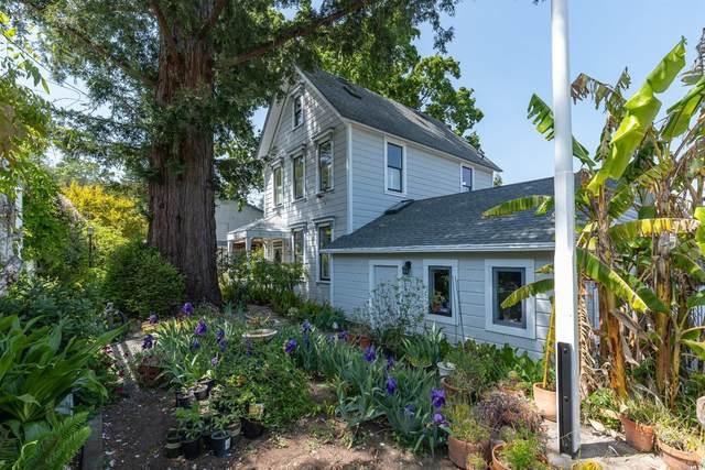 116 Antonette Avenue, San Rafael, CA 94901 (#321031034) :: Team O'Brien Real Estate