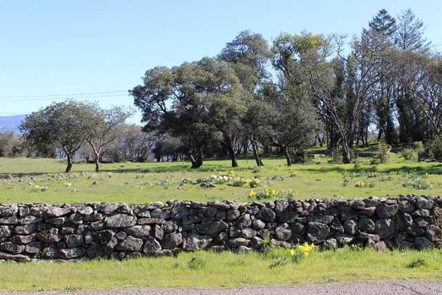 2955 Old Bennett Ridge Road, Santa Rosa, CA 95404 (#321035490) :: Team O'Brien Real Estate